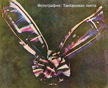 фотография тартановая лента