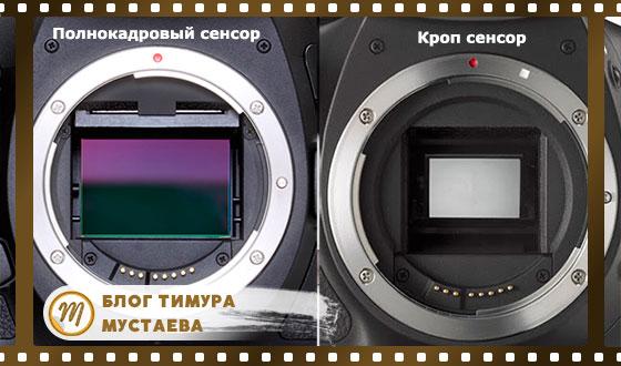 матрицы в фотоаппарате