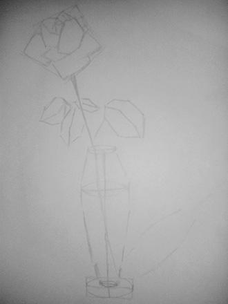 контуры розы