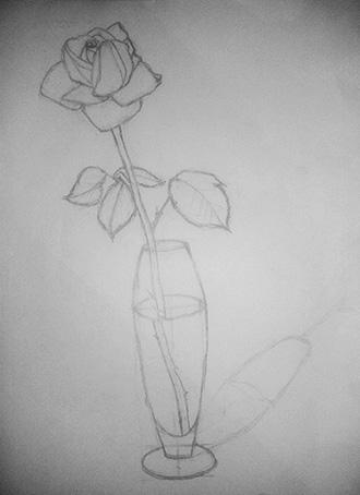 очертание розы